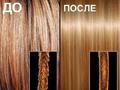Ламинирование волос Sebastian Laminates Cellophanes а3-300мл.-USA - Изображение #2, Объявление #913583
