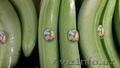 Бананы зелёные оптом - Изображение #2, Объявление #329805